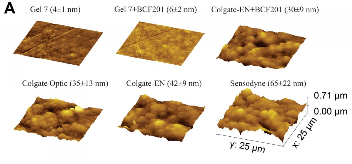 figure 3A - Representative atomic force microscope images of resin-based composite