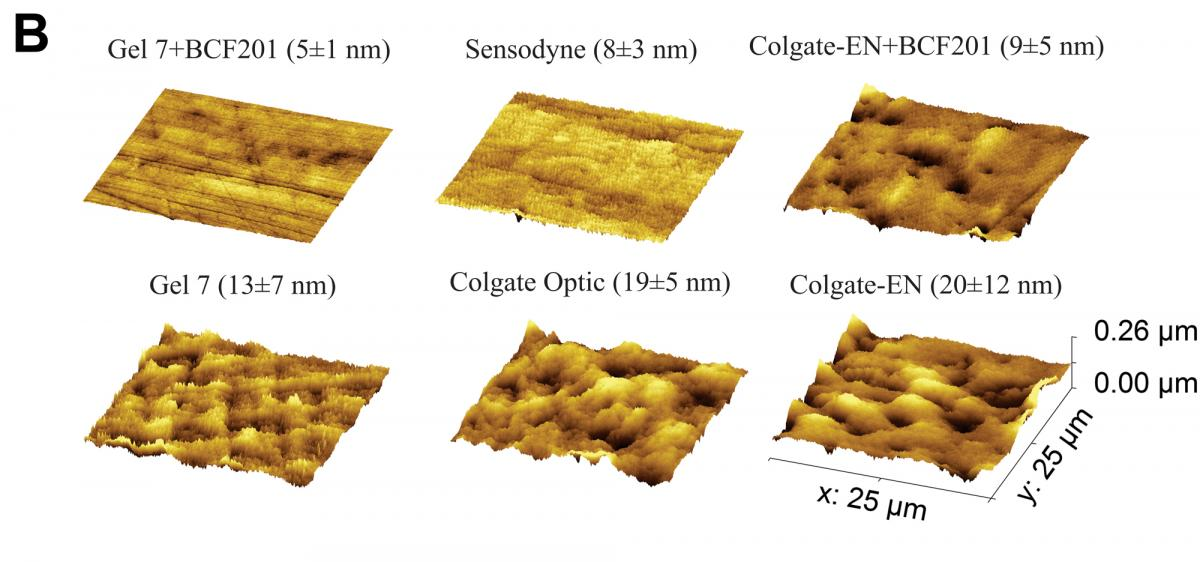 figure 3B - Representative atomic force microscope images of enamel